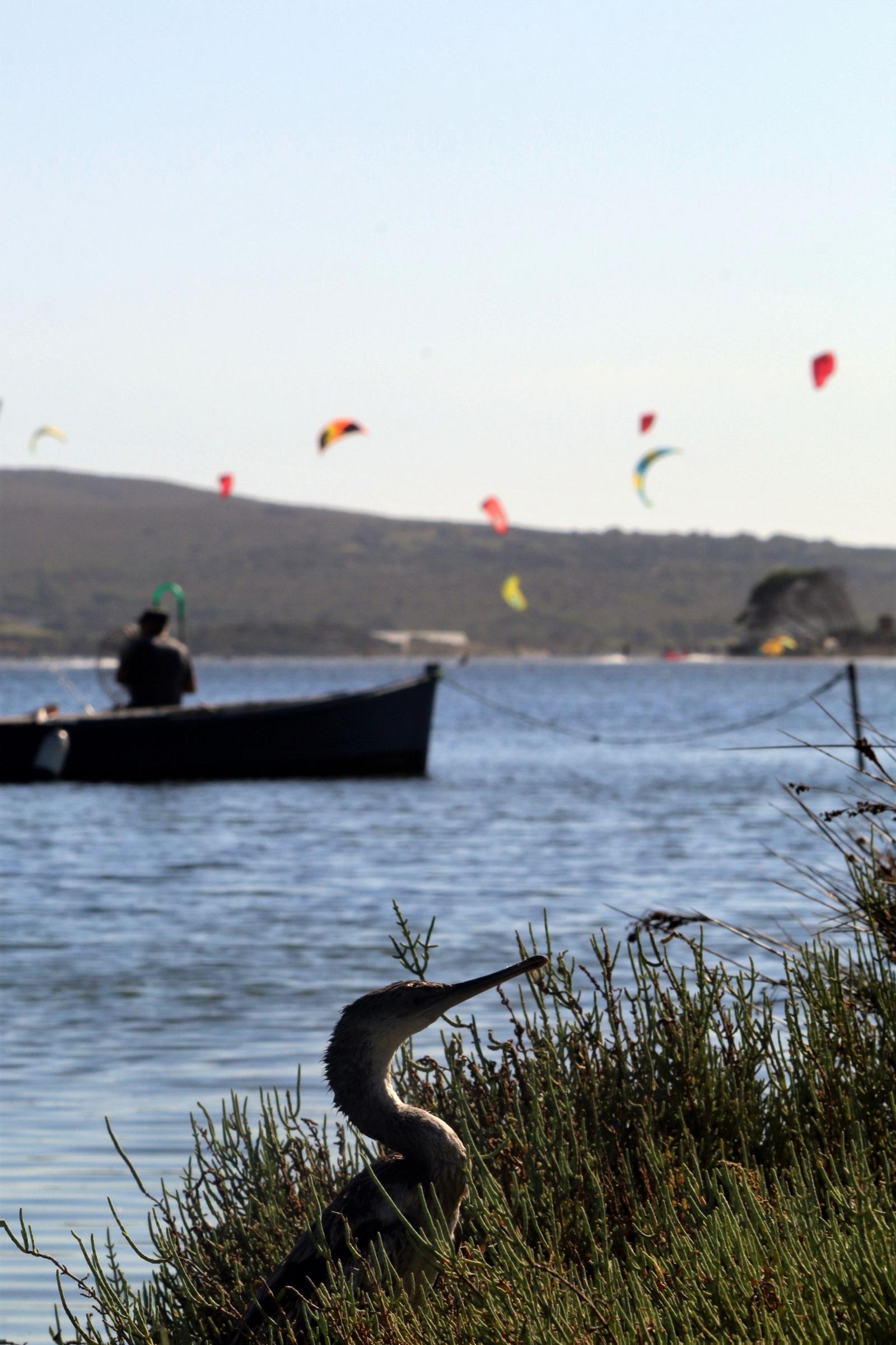 The Kite Spot of Punta Trettu in Sardinia